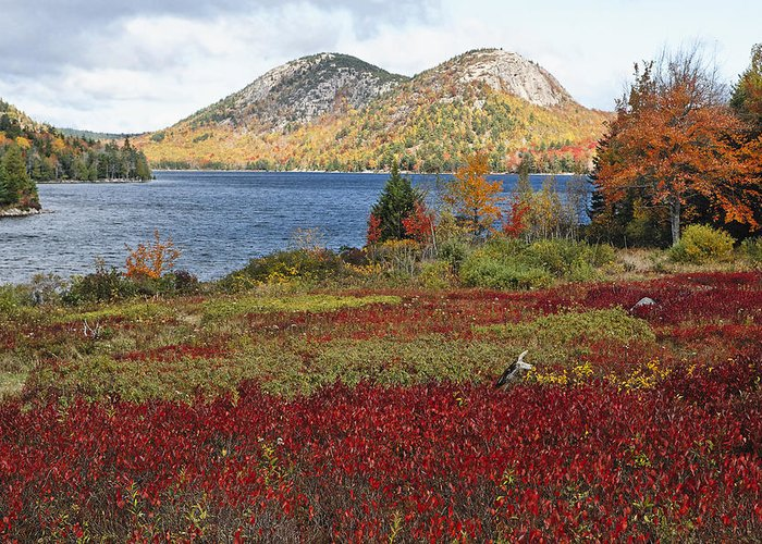 Acadia National Park Greeting Card featuring the photograph Jordan Pond And The Bubbles by George Oze