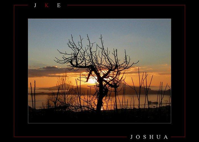 Tree Greeting Card featuring the photograph Joshua by Jonathan Ellis Keys