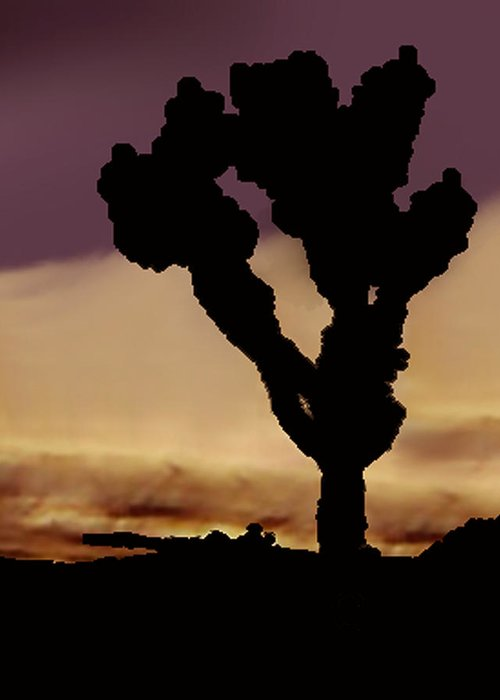 Greeting Card featuring the photograph Joshua Tree Silo At Sunset by Curtis J Neeley Jr