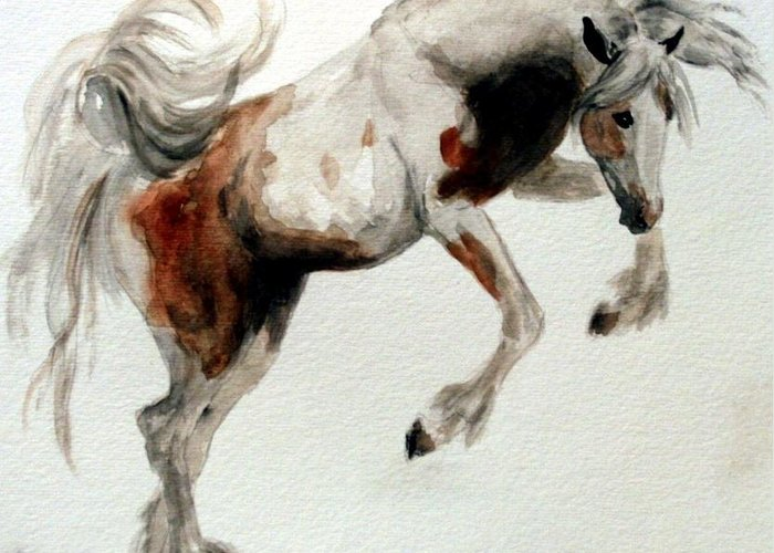 Horse Gypsy Vanner Greeting Card featuring the painting Jubilant Gypsy by BJ Redmond
