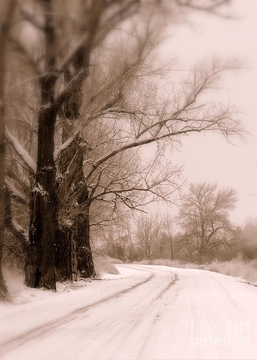 Winter Greeting Card featuring the photograph Just Around The Bend by Carol Groenen