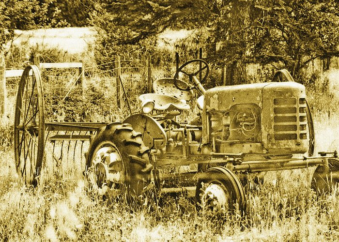 Vintage Greeting Card featuring the photograph Just For Lookin' At... Now by Linda McRae