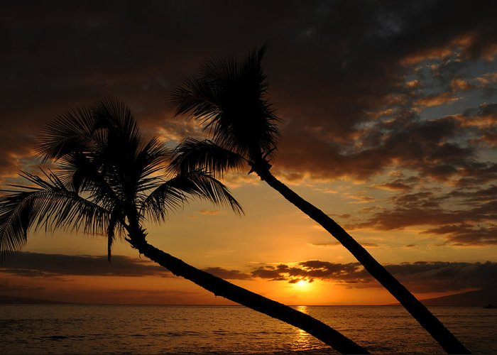Photograph Greeting Card featuring the photograph Ka'anapali Beach Sunset by Kelly Wade