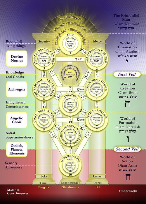 Kabbalah Tree Of The Sephiroth Photograph By Selim Oezkan The nodes are often arranged into three columns to represent that they belong to a common category. kabbalah tree of the sephiroth by selim oezkan
