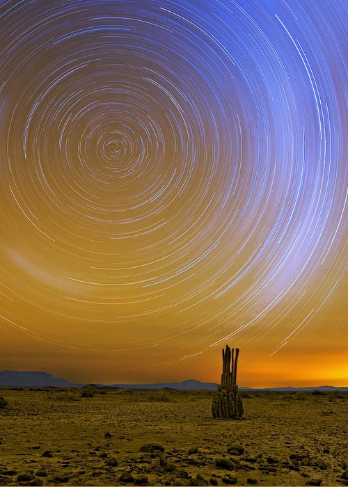 Desert Greeting Card featuring the photograph Karoo Desert Star Trails by Basie Van Zyl