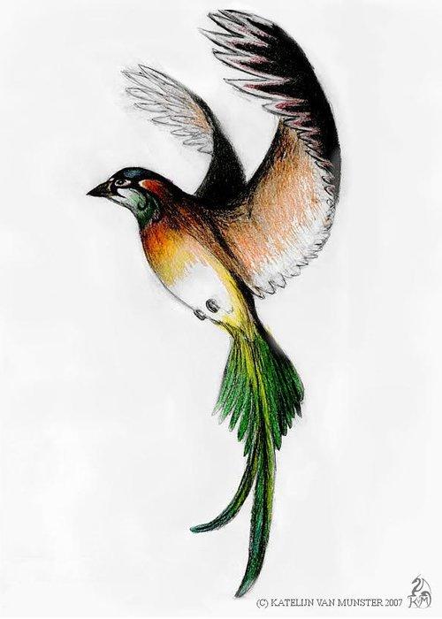 Bird Greeting Card featuring the drawing Kathleen's Bird by Katelijn Van Munster