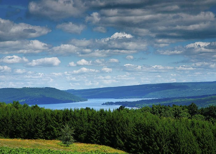 Lake Greeting Card featuring the photograph Keuka Landscape V by Steven Ainsworth
