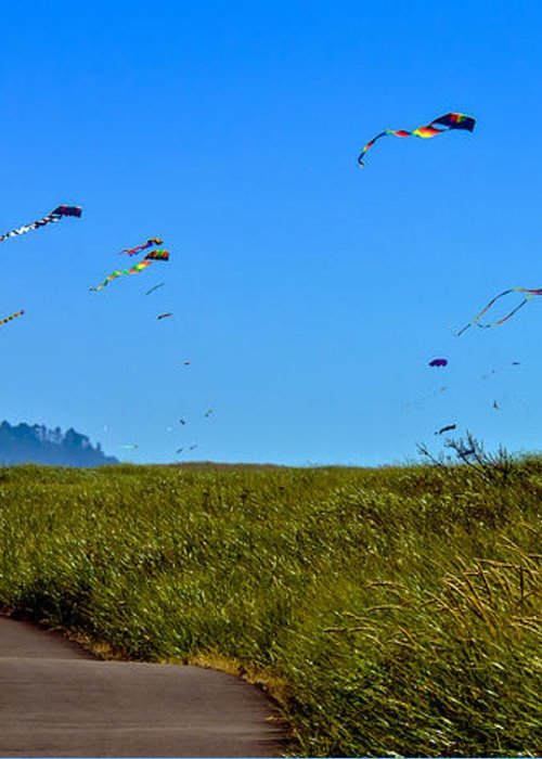 Haybales Greeting Card featuring the photograph Kites by Robert Bales