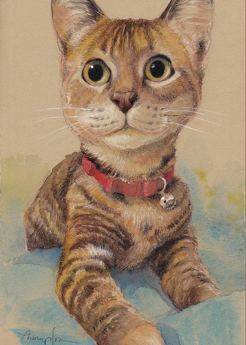Funny Kitten Greeting Cards