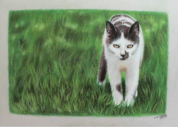 Cat Greeting Card featuring the drawing Kitty Grass by Denise Nijs