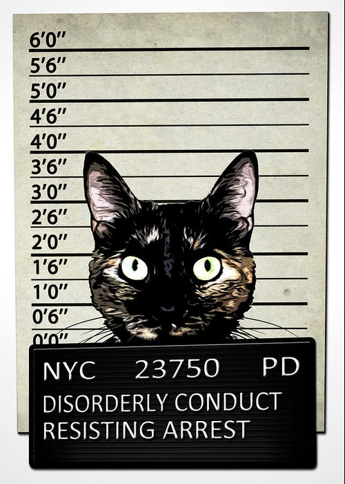 Cat Greeting Card featuring the mixed media Kitty Mugshot by Nicklas Gustafsson