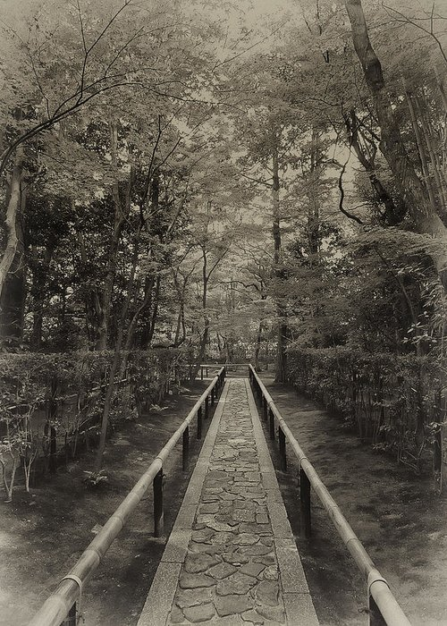 Samurai Greeting Card featuring the photograph Koto-in Zen Temple Forest Path - Kyoto Japan by Daniel Hagerman