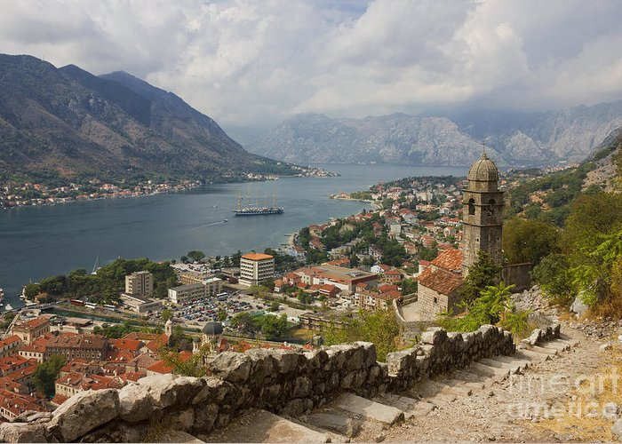 Coast Greeting Card featuring the photograph Kotor Panoramic View From The Fortress by Kiril Stanchev