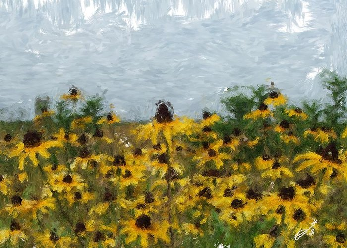 Field Black Yellow Flowers Green Painting Floral Daisies Garden Oil Eyed Impressionism Monet Greeting Card featuring the painting Krystallyn's Susans by Eddie Durrett