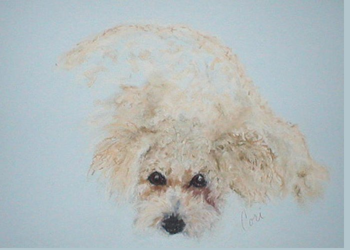 Dog Greeting Card featuring the drawing Kuku by Cori Solomon