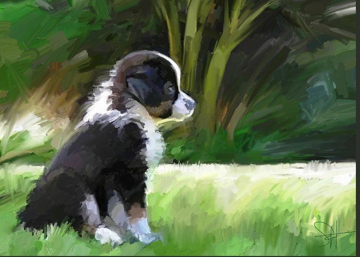 Aussie Dog Collie Greeting Card featuring the digital art Ku'uipo by Scott Waters