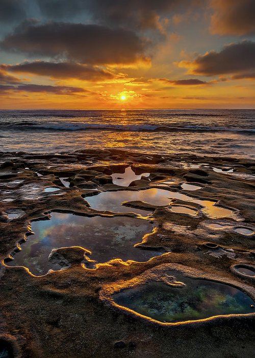 California Greeting Card featuring the photograph La Jolla Tidepools by Peter Tellone