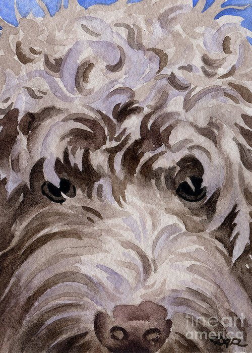 Labradoodle Greeting Card featuring the painting Labradoodle by David Rogers