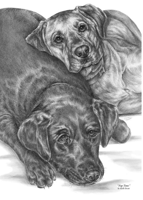 Two Greeting Card featuring the drawing Labrador Dogs Nap Time by Kelli Swan