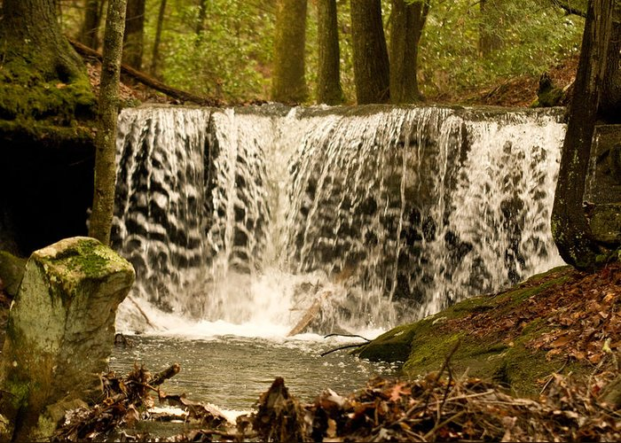 Lacy Greeting Card featuring the photograph Lacy Waterfall by Douglas Barnett