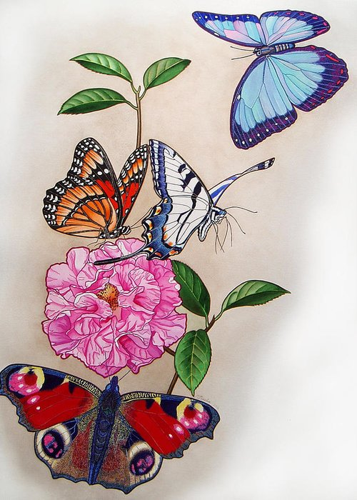 Butterflies Greeting Card featuring the painting Ladies Of The Camellia by Vlasta Smola