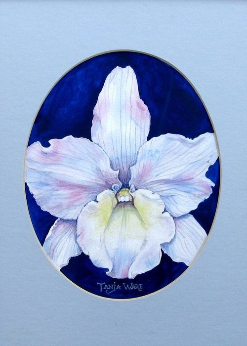 Floral Greeting Card featuring the painting Lady In White by Tanja Ware