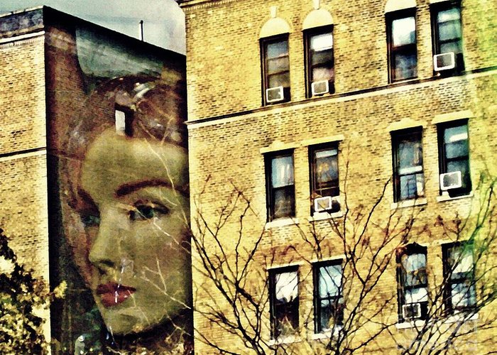 Face Greeting Card featuring the photograph Lady Of The House by Sarah Loft