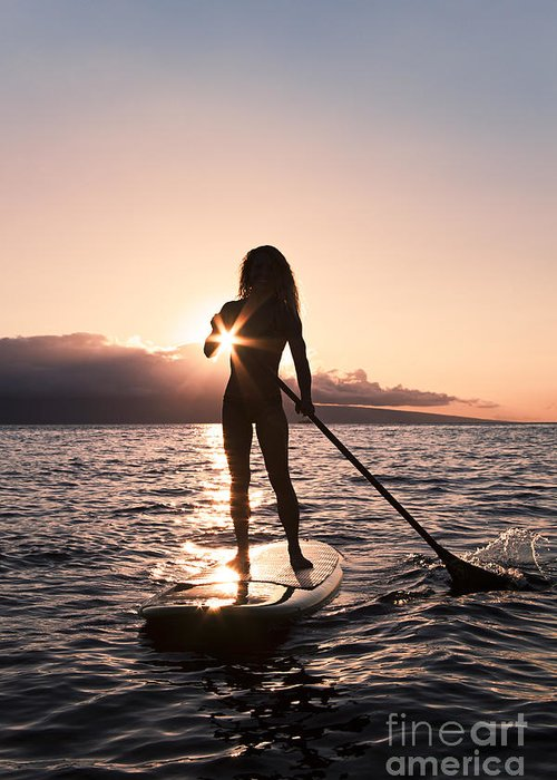 Activity Greeting Card featuring the photograph Lady Paddling by Dave Fleetham - Printscapes