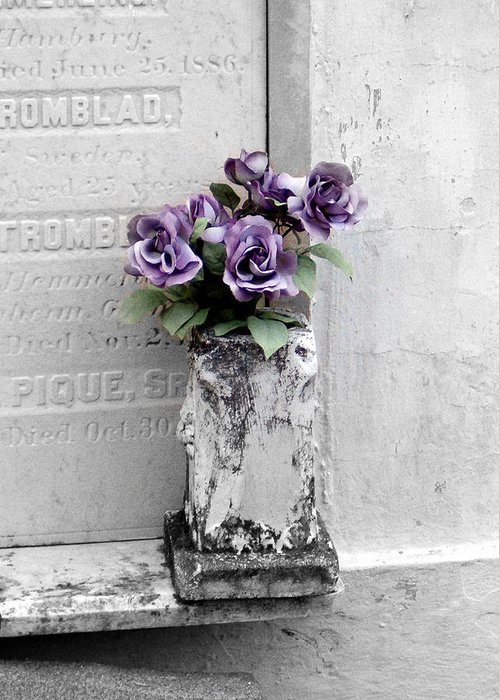 Roses Greeting Card featuring the photograph Lafayette No One Purple Roses by Heather S Huston
