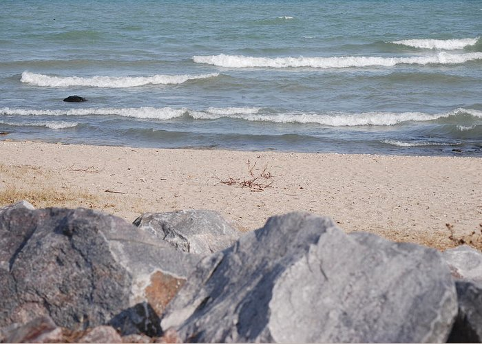 Landscape Greeting Card featuring the photograph Lake Michigan Beach by Lisa Gabrius