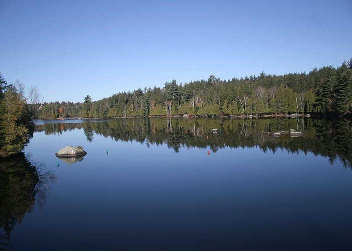 Adirondacks Greeting Card featuring the photograph Lake Side View by Kate Leikin