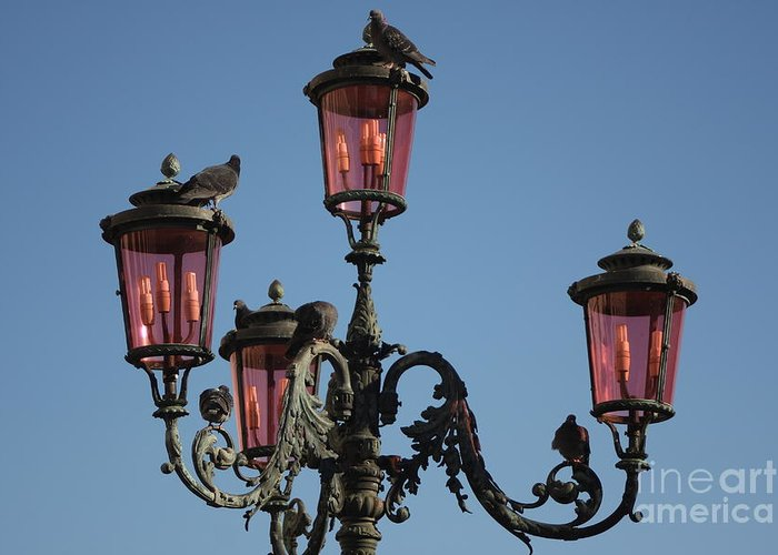 Venice Greeting Card featuring the photograph Lamp Post In Venice With Pigeons by Michael Henderson