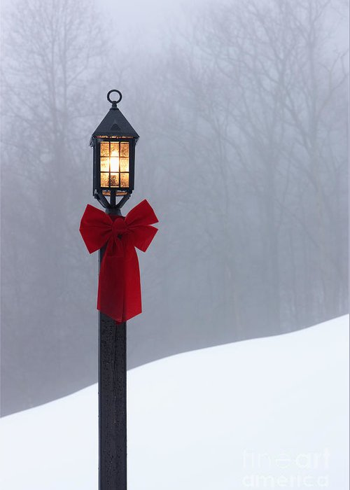 Bare Trees Greeting Card featuring the photograph Lamppost In Snow by Will and Deni McIntyre