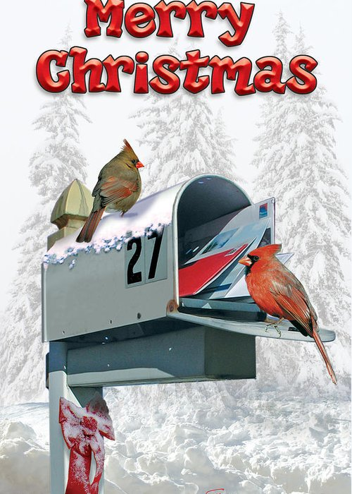 Christmas Card Greeting Card featuring the digital art Last Years Christmas Card by Harold Shull