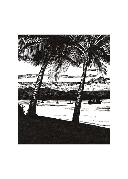 Dunk Island Drawings Greeting Cards