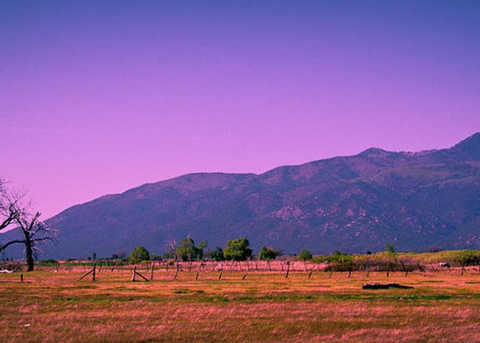Taos Greeting Card featuring the photograph Late Afternoon In Taos by David Patterson