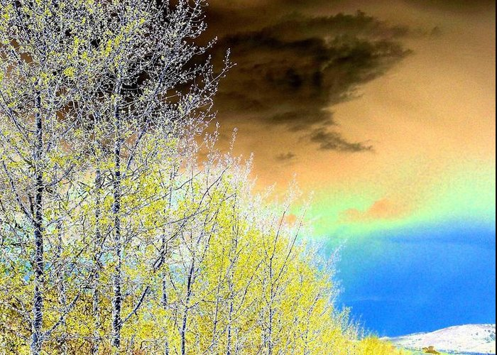 Late Autumn Greeting Card featuring the photograph Late Autumn by Will Borden