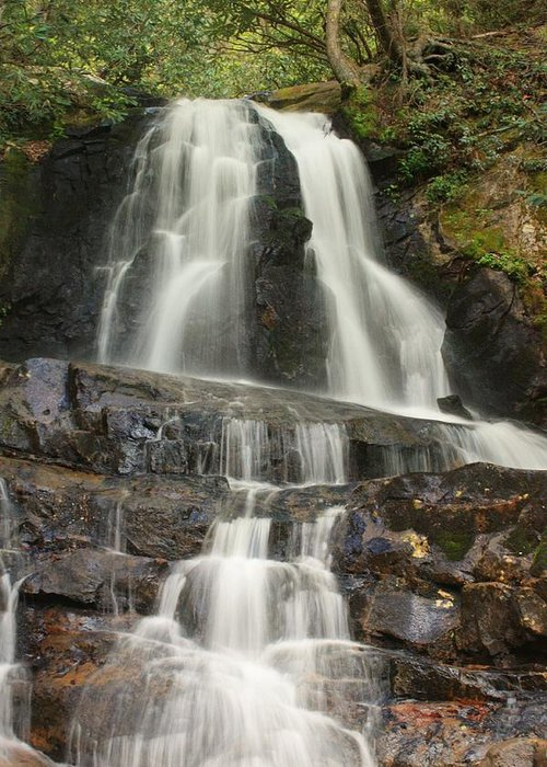 Waterfalls Greeting Card featuring the photograph Laurel Falls by Darlene Neisess