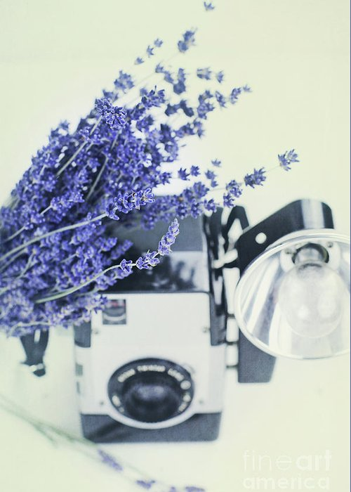 Lavender Greeting Card featuring the photograph Lavender And Kodak Brownie Camera by Stephanie Frey