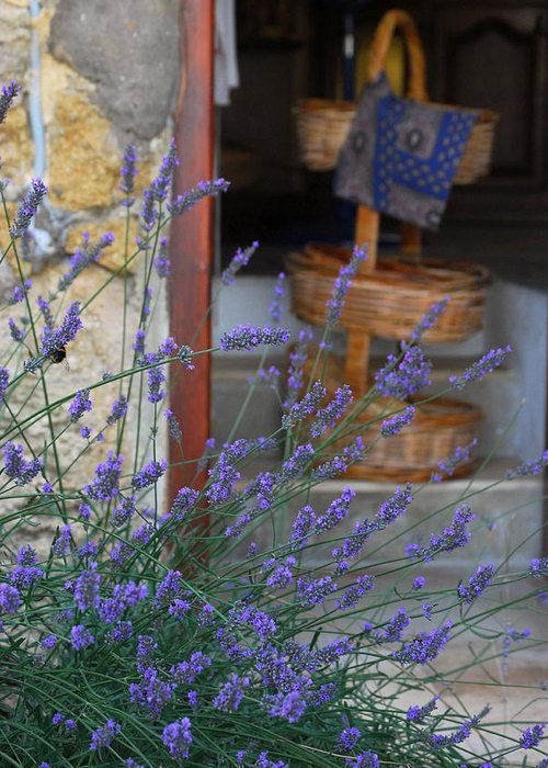 Provence Greeting Card featuring the photograph Lavender Blooming Near Stairway by Anne Keiser