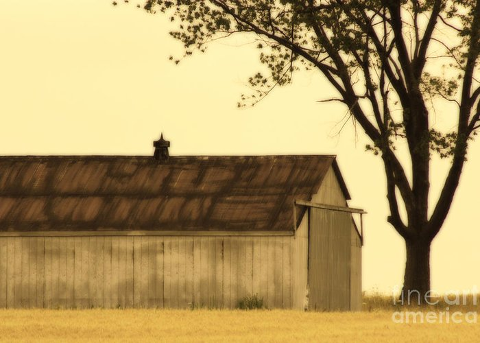 Farm Greeting Card featuring the photograph Lazy Days Barn by Cathy Beharriell