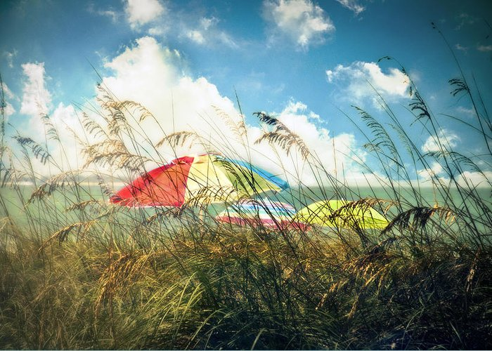 St. Petersburg Greeting Card featuring the photograph Lazy Days Of Summer by Tammy Wetzel