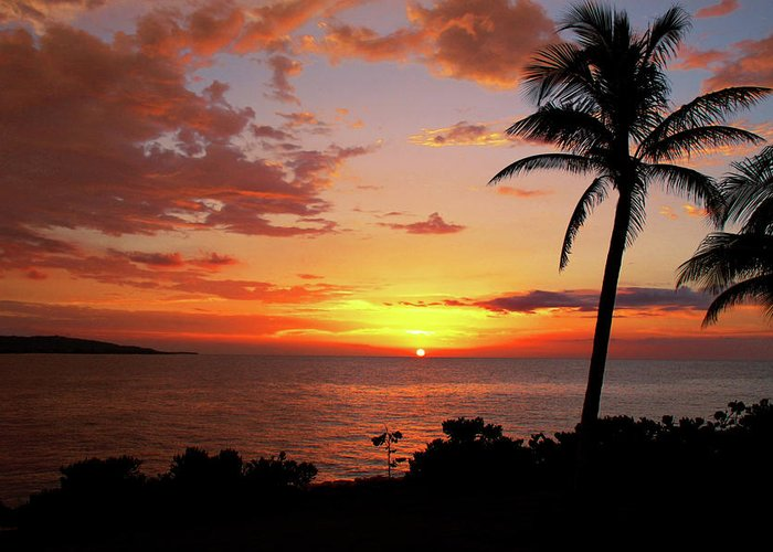 Jamaican Sunsets Greeting Cards