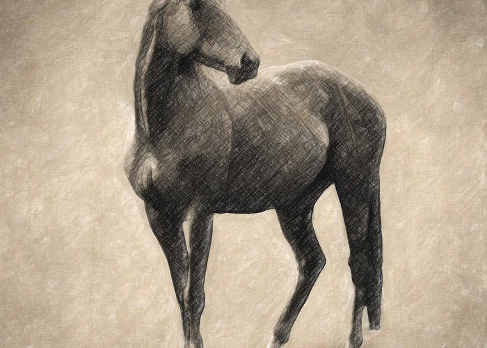 Horse Greeting Card featuring the drawing Le Cheval by Zapista