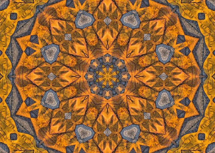 Kaleidoscope Greeting Card featuring the photograph Leaf Glow by Lyle Hatch