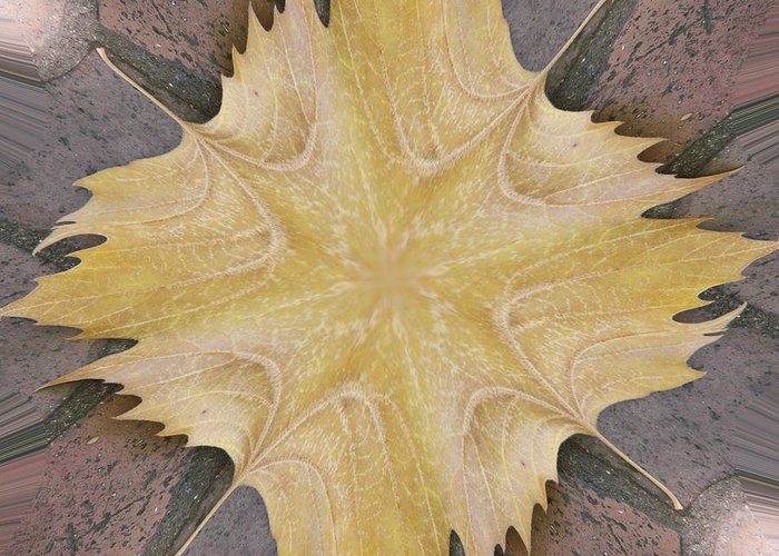 Leaf Greeting Card featuring the photograph Leaf On Bricks 6 by Tim Allen
