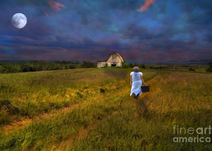 Adult Greeting Card featuring the photograph Leaving by Darren Fisher