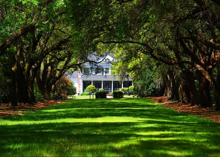 Photography Greeting Card featuring the photograph Legare Waring House Charleston Sc by Susanne Van Hulst