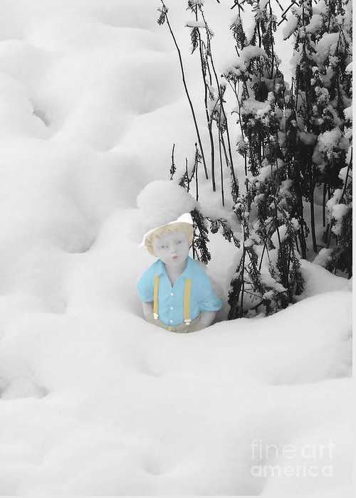 Garden Greeting Card featuring the photograph Let It Snow by Al Bourassa