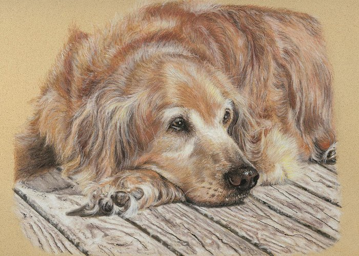 Canine Greeting Card featuring the pastel Lexie by Terry Kirkland Cook